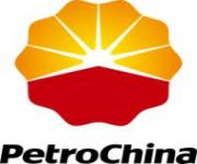 PETROCHINA INTERNATIONAL COMPANIES IN INDONESIA